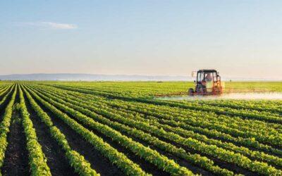 """Mundo Rural une-se em manifesto """"Por uma alimentação consciente em Portugal"""""""